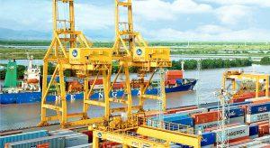 Hướng dẫn cách tra cứu Container online